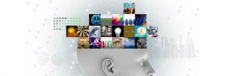 Neuroscience header